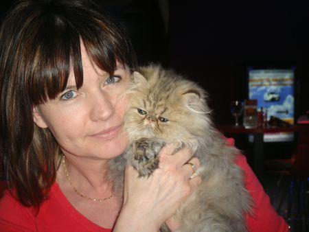 Elevage de chat persan